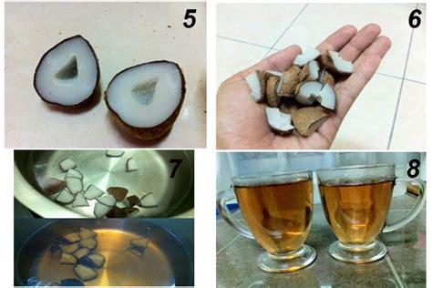 Buah Zuriat Untuk Kesuburan Dan Program cara sediakan air rebusan buah zuriat bantu wanita ini selepas 2 tahun menunggu vanilla