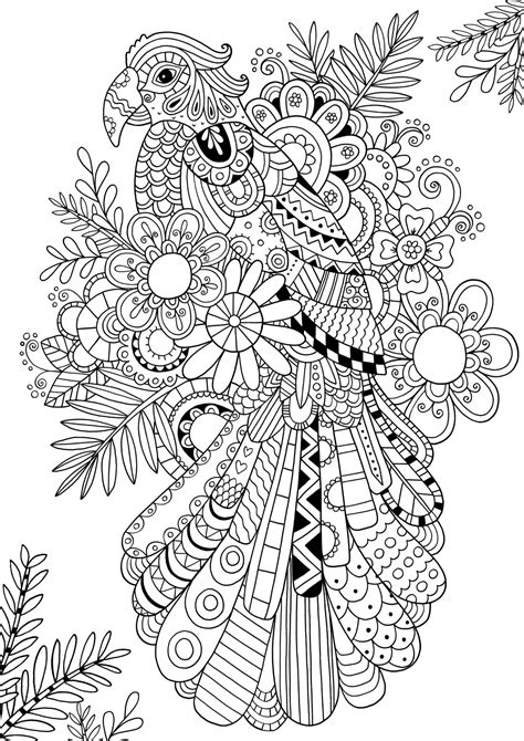 large coloring books for adults how to draw zentangle patterns illustrations coloring
