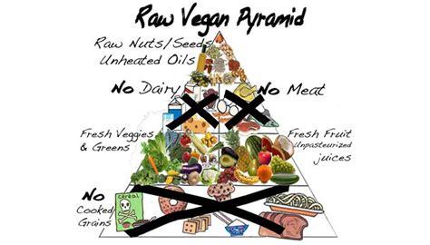 piramide alimentare vegana la verit 224 sulla dieta vegana biochronicles