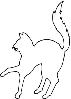 scared cat coloring page scared cat outline coloring page super coloring