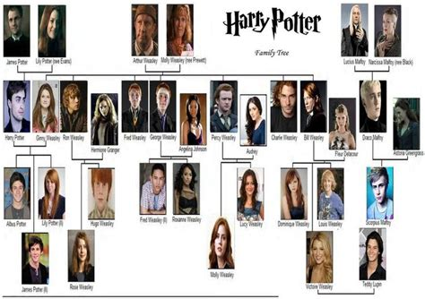 the cole family tree potter family and friends 25 best images about harry potter second gen on