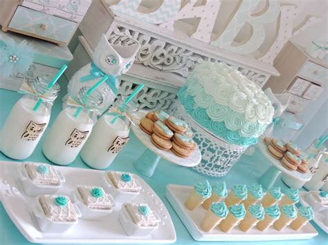 at home baby shower ideas welcome home baby owl shower baby shower ideas themes