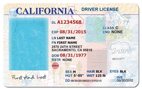 drivers license template california drivers license template search mine