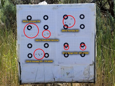printable muzzleloader targets the diy hunter magnum charges with my cva accura v2 and