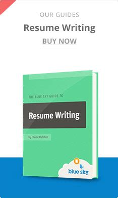 Resume Writing Books 2014 by Free Stuff Blue Sky Resumes
