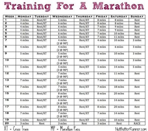 running your marathon the complete 20 week marathon plan books 23 best amazing races images on half marathons