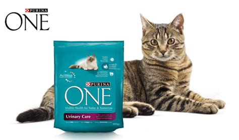 calcoli renali alimentazione corretta purina one urinary care 800gr 4ze club
