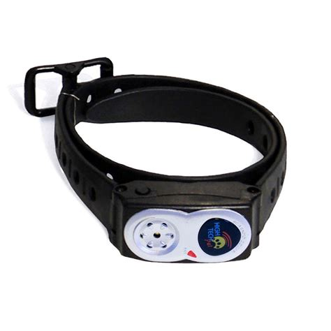 pet tech collar ultra play novice course commercial playful colors bark nvkit p the home depot