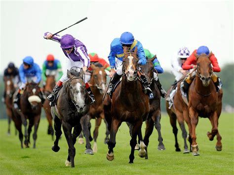 bet  horse racing   bet