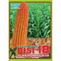 Bibit Jagung Bisi 222 jual benih jagung hibrida pertiwi 6