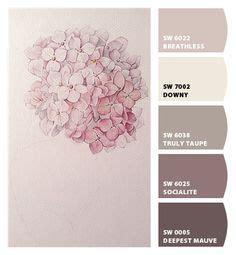 taupe paint colors te hakkında 25 den fazla en iyi fikir yatak odası boya renkleri