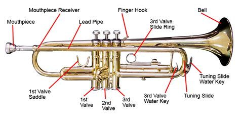 trumpet diagram trumpets the only website with all the information about