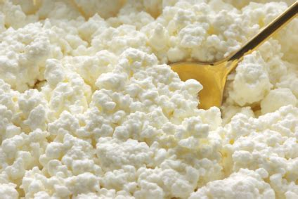 Home Made Cottage Cheese by Cottage Cheese Is Easy To Make Preparedness