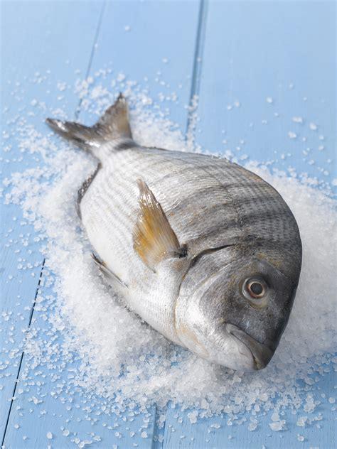 come cucinare il sarago sarago sale pepe