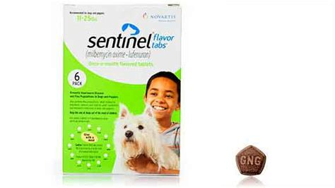 sentinel for puppies sentinel for dogs with milbemycin oxime prevents heartworm petcarerx