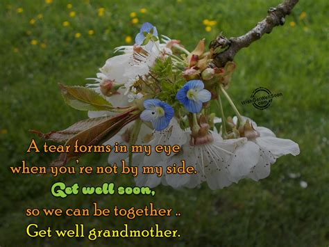 can my eyesight get better get well soon wishes for grandmother pictures images