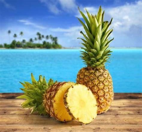 cucinare ananas l ananas cucinare it