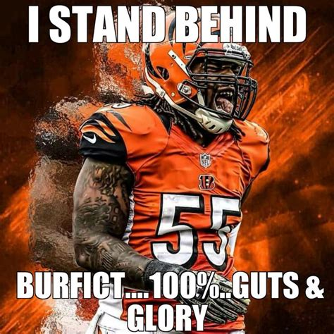 Cincinnati Bengals Memes - 25 best ideas about cincinnati bengals memes on pinterest