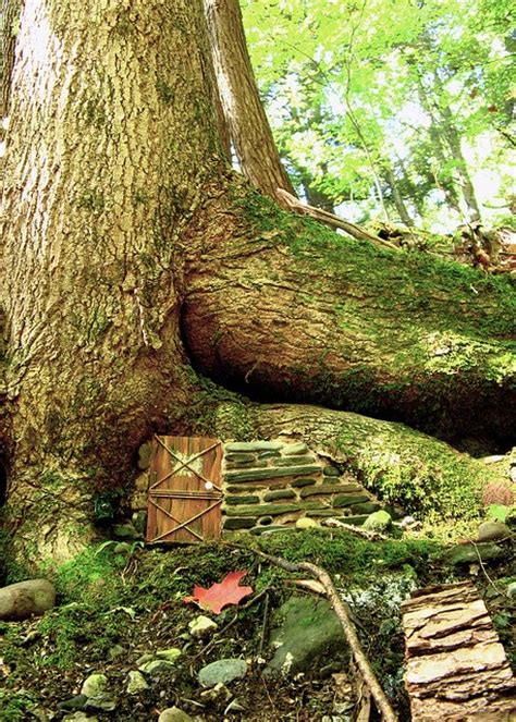 building a tree house everything you need to know list of things you need to make a fairy house