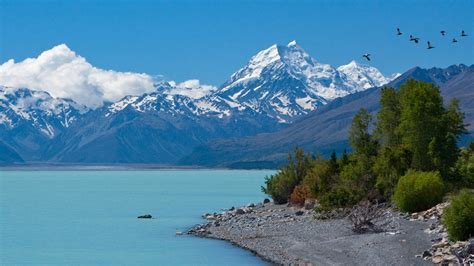 new zealand will give you a free trip if you agree to a job interview new zealand check out new zealand cntravel