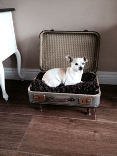 Oude Koffer Pimpen by Hondenmand On Pet Beds Beds And Diy Bed