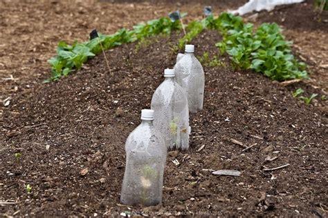come fare irrigazione giardino impianto irrigazione orto impianto irrigazione