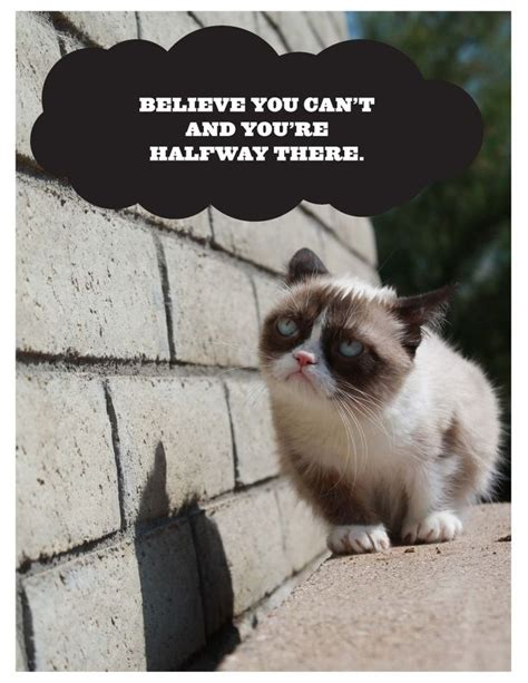 printable cat poster demotivational grumpy cat poster print for free