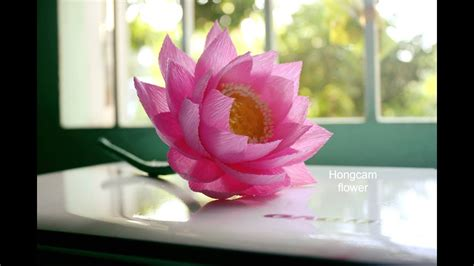 How To Make A Lotus Flower Out Of Paper - how to make lotus flower from crepe paper