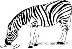 Zebra Outline Picture by Animals Zebra 328 1 Outline Classroom Clipart