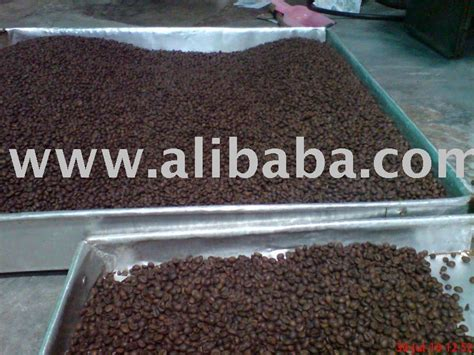 Coffee Robusta Sidikalang arabica coffee beans sidikalang sumatera products