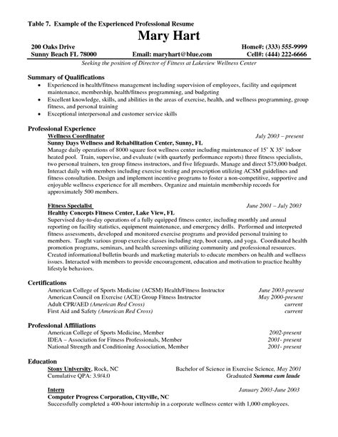 Experienced Resume Summary Experience Resume Template Resume Builder