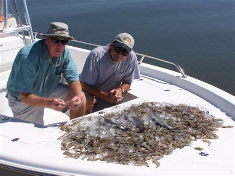 shrimp boat tour hilton head sc hartrickshrimp hiton head fishing adventures