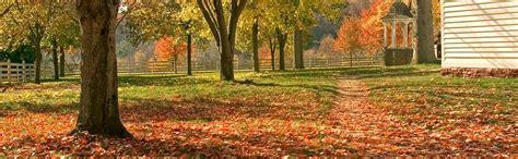 fall cleanup landscaping fall cleanup landscape yard shearer patio