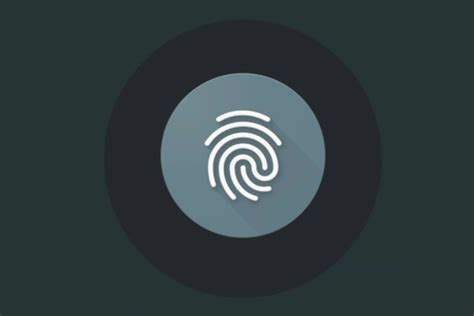 android fingerprint android m s getting the equivalent of apple s touch id greenbot
