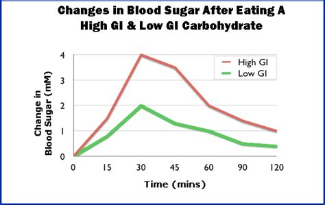 healthy fats blood sugar how insulin really works a definite insulin guide