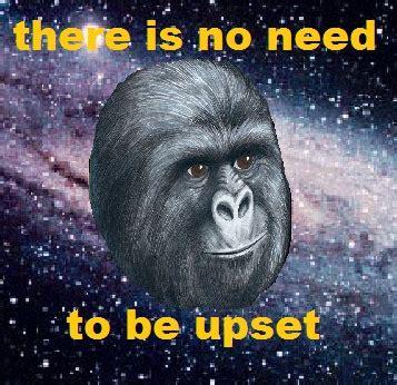 Gorilla Munch Meme - gorilla munch the once and future coffee addict
