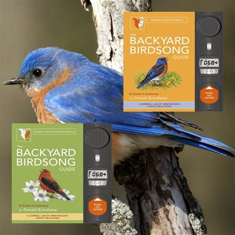the backyard birdsong guide america 2 volume set