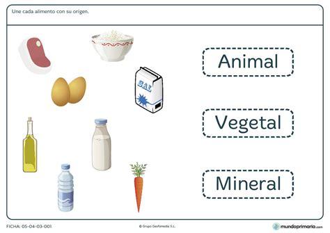maqueta primer grado de los alimentos origen animal y vegetal ficha del origen de los alimentos para primaria