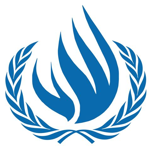 United Nations Nation 48 by December 10 1948 A Friday Professor Large