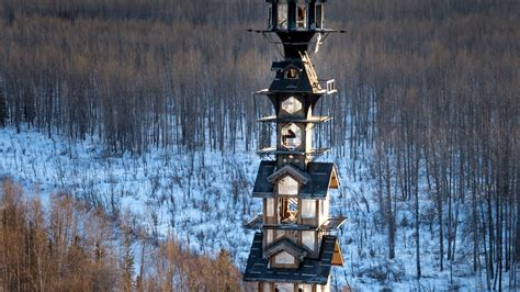 Goose Creek Cabins by Can You Really Live In A Dr Seuss House