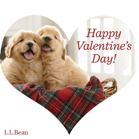 pet valentines happy s day from llbean best friends