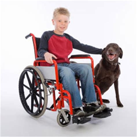 Search For With Disabilities Disabled Persons Handicapped With Disabilities Persons With Disabilities