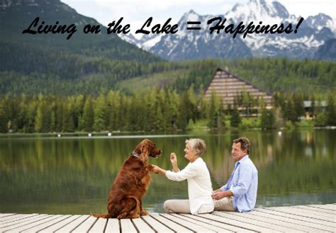 lake house com lakehouse com lake homes for sale lakefront real estate