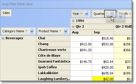 swing components in java with exle jide software jide pivot grid a pivot table component