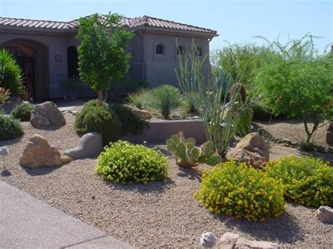 awesome desert landscaping ideas with lovely desert plants