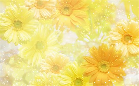 yellow background wallpapers hd backgrounds