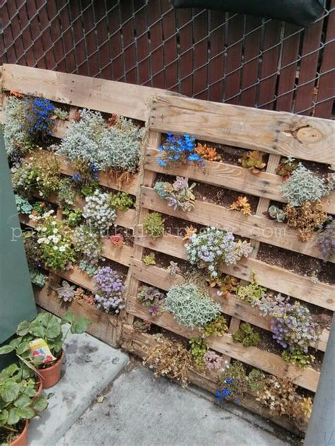 25 vertical and box recycled pallet planters pallet