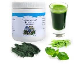 Unicity chlorophyll powder botanical beverage whitening