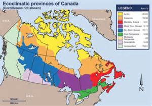 canada climate regions map forestry adaptation climate change connection