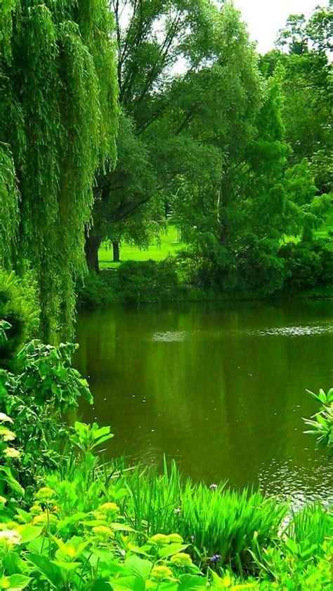 leer libro e peru natural eden of birds gratis descargar 599 best dreaming of eden images on gardening beautiful pictures and garden deco